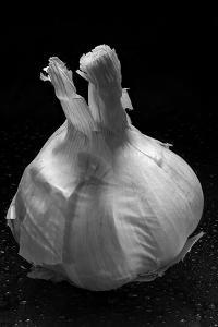 Garlic Bulb BW by Steve Gadomski