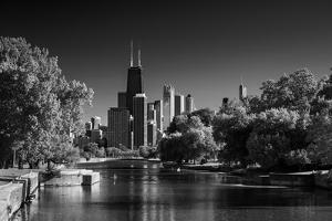 Lincoln Park Lagoon Chicago BW by Steve Gadomski