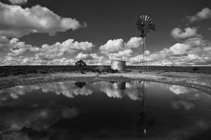 Ranch Pond, New Mexico by Steve Gadomski