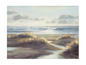 Low Tide by Steve Henderson