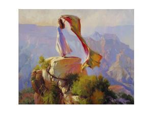 Spirit of the Canyon by Steve Henderson
