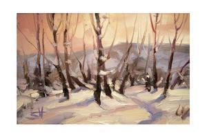 Winter Grove by Steve Henderson