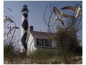 Cape Lookout I by Steve Hunziker