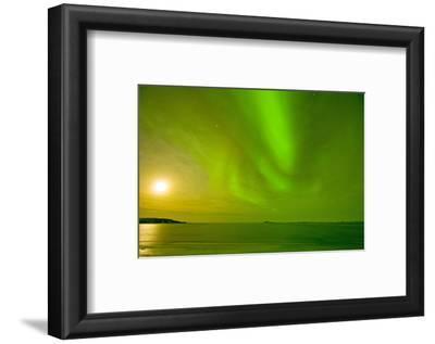 Green Northern Lights over the Sea, Beaufort Sea, ANWR, Alaska, USA