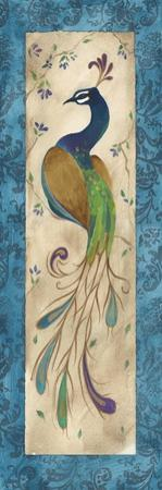 Peacock IV by Steve Leal