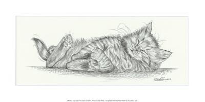 Lazy Days IV by Steve O'Connell