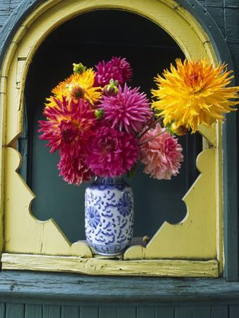 Dahlia Flowers in Vase, Ornate Window Frame, Bellingham, Washington, USA