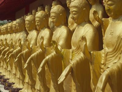 Standing Gold-Colored Buddha Statues at a Buddhist Shrine, Foukuangshan Temple, Taiwan