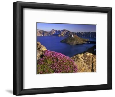 Penstemon Blooms on Cliff Overlooking Wizard Island