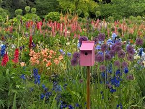 Pink Birdhouse in Flower Garden by Steve Terrill