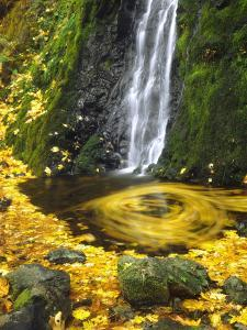 Starvation Creek Falls Creates a Maple Leaf Whirlpool on Water by Steve Terrill