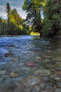 USA, Oregon, Mt. Hood National Forest. Sandy River Landscape by Steve Terrill
