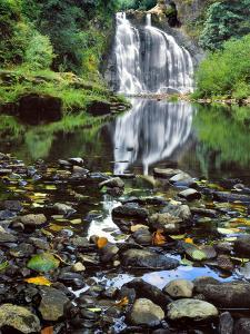 USA, Oregon, Young's River Falls. Waterfall Landscape by Steve Terrill