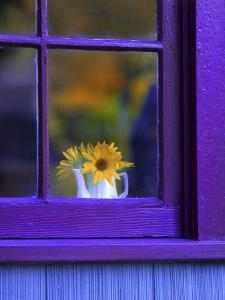 Window with Sunflowers in Vase by Steve Terrill