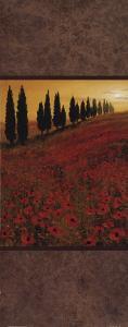 Poppy Field Panel II by Steve Thoms