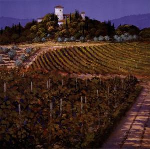 Vines by Steve Thoms