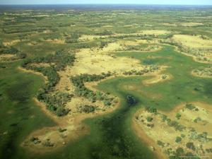 Aerial View of Inland Sea Formed by Okavango Delta, Botswana by Steve Turner