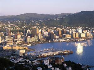 City Skyline and Harbour, Wellington, North Island, New Zealand by Steve Vidler