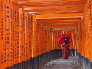 Japan, Kyoto, Fushimi Inari Taisha Shrine, Tunnel of Torii Gates by Steve Vidler