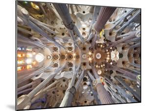 Spain, Barcelona, Sagrada Familia, Interior by Steve Vidler