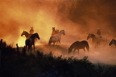 E0999 Cowboys and Horses in a Field at Sunset by Steve Wanke