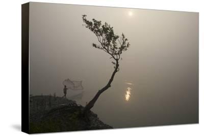 A Fisherman Casts a Net in India's Sundarbans Region