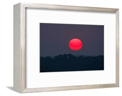 A Red Sun Rises over the Silhouetted Landscape of the Phinda Game Reserve