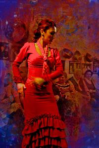 The Flamenco Dancer by Steven Boone