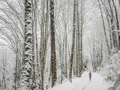 Alyson Dimmitt Gnam Trail Running in the Cascades.  Winter in Washington.