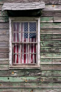 Americana Flag by Steven Maxx