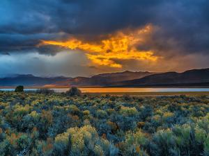 Sierra Scene by Steven Maxx