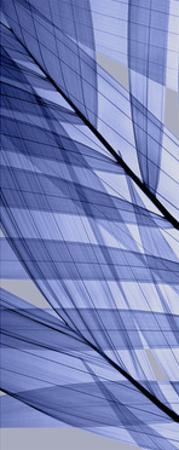 Palms A, Blue by Steven N. Meyers