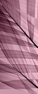Palms A, Rose Quartz by Steven N^ Meyers