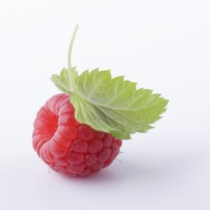 A Raspberry with Leaf (Close-Up) by Steven Wheeler