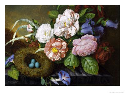 Still Life of Camelias-Woodleigh Marx Hubbard-Giclee Print