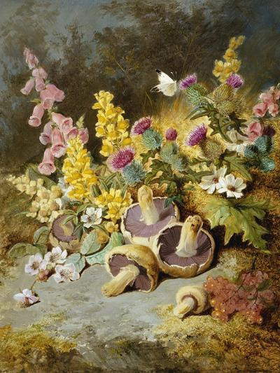 Still Life of Floxgloves, Mushrooms, Snapdragons, and Thistles-Thomas Worsey-Giclee Print