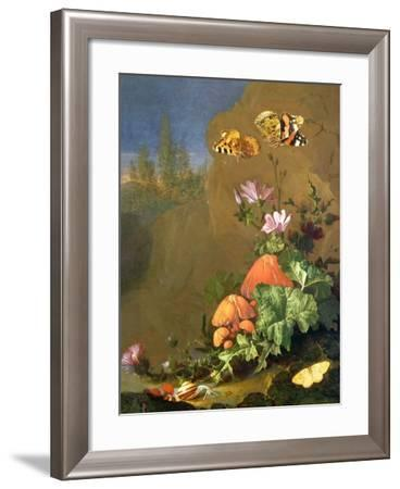 Still Life of Forest Floor with Flowers, Mushrooms and Snails-Elias Van Den Broeck-Framed Giclee Print