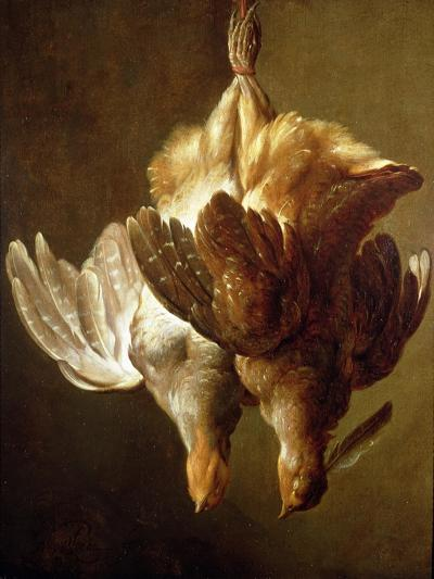 Still Life of Two Partridges-Matthew Bloem-Giclee Print