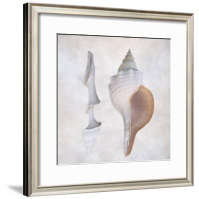 Still Life of Two Shells-Joyce Tenneson-Framed Photographic Print