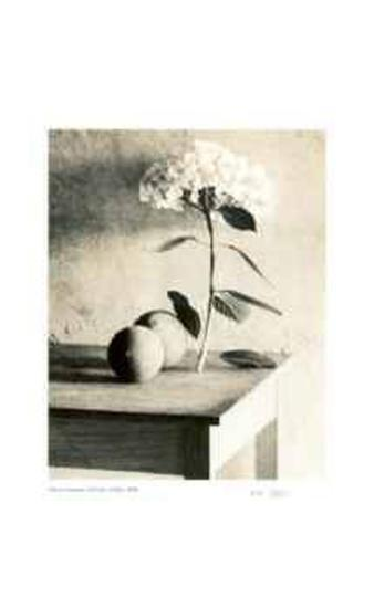 Still Life on Table-Adriene Veninger-Collectable Print