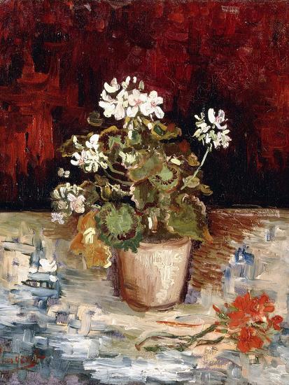 Still-Life Pot of Geraniums, 1886-Vincent van Gogh-Giclee Print