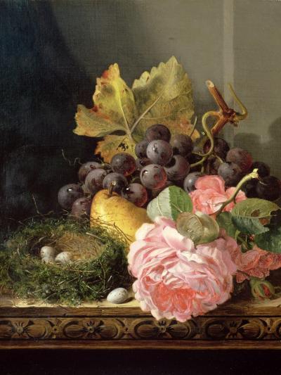 Still Life, Roses, Fruit and Bird's Nest-Edward Ladell-Giclee Print