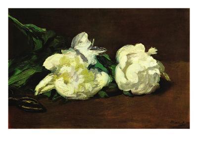 Still Life, White Peony-Edouard Manet-Art Print