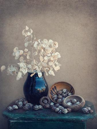 https://imgc.artprintimages.com/img/print/still-life-with-a-lunaria-and-snails_u-l-q1fiy570.jpg?p=0