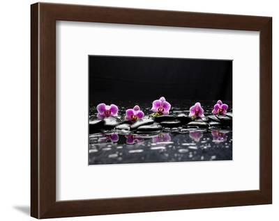 Still Life with Black Stone and Five Orchid-crystalfoto-Framed Photographic Print