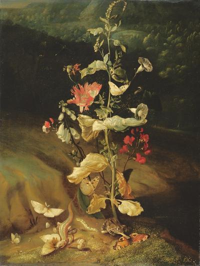 Still Life with Flowers-Otto Marseus Van Schrieck-Giclee Print