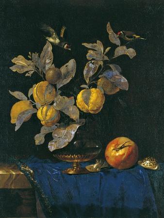 Still Life with Fruit-Willem van Aelst-Giclee Print