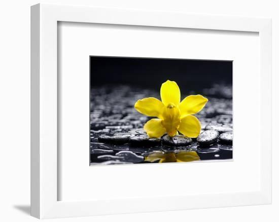 Still Life with Pebbles and Yellow Orchid-crystalfoto-Framed Photographic Print