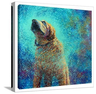Still Shakin' The Blues-Iris Scott-Gallery Wrapped Canvas