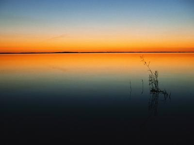 Still Waters of Lake at Twilight, Muritz National Park, Germany-Norbert Rosing-Photographic Print
